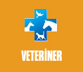Veteriner Logo
